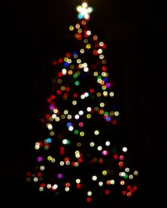 multicolored Christmas lights in tree shape with white star against black background