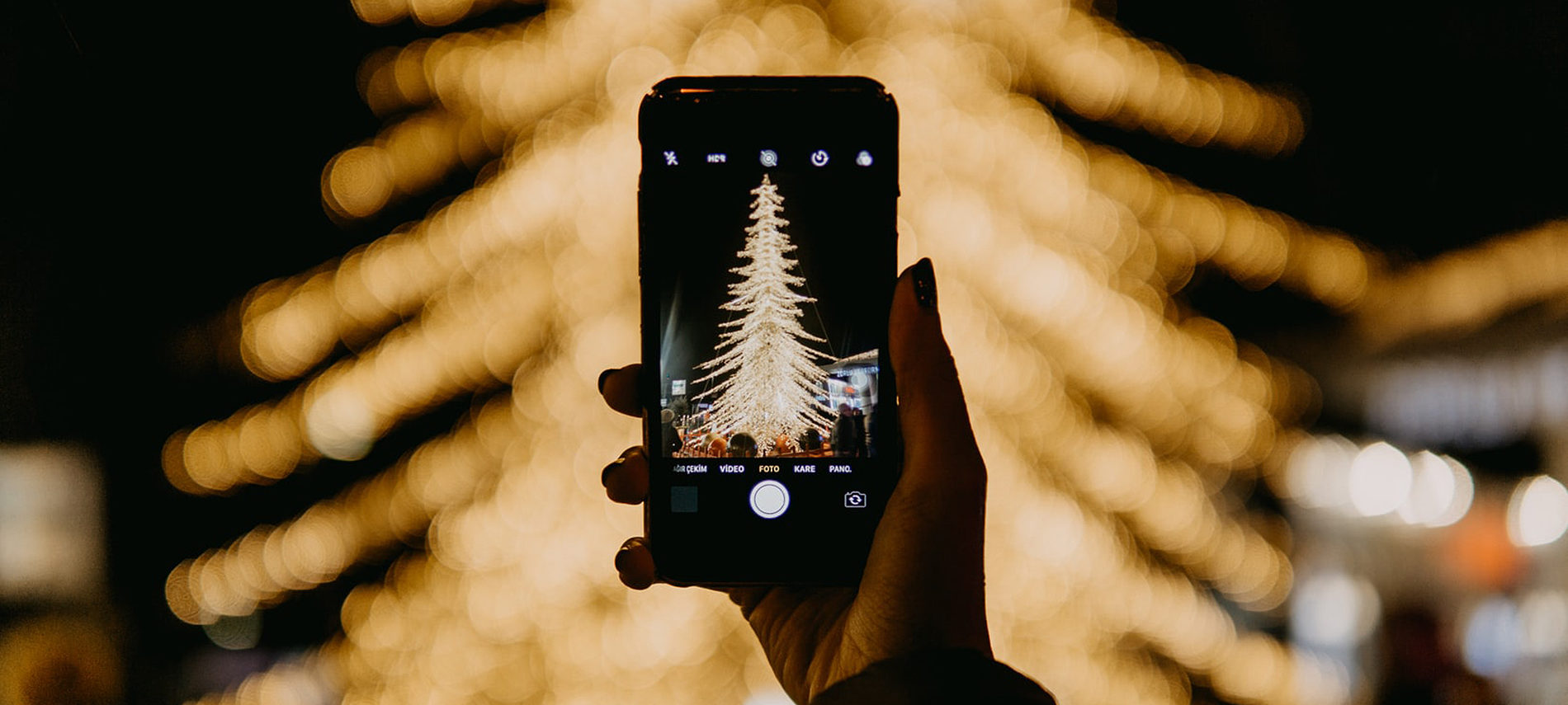 person's arm holding cell phone photographing white holiday lights in tree